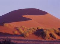 ナミブ砂漠の砂丘 ソススフレイ