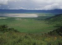 ンゴロンゴロ国立公園 クレーター