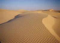 サム砂丘 ジャイサルメール2月 ラジャスタン州 インド 25947040135| 写真素材・ストックフォト・画像・イラスト素材|アマナイメージズ