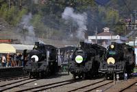 大井川鐡道の蒸気機関車
