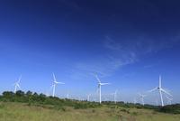 布引高原の風車
