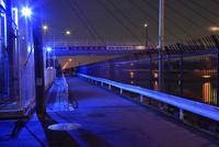 青色防犯灯で照らされた道