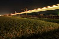 稲穂と電車の光跡