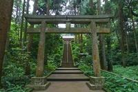 熊野神社 参道 25981002650| 写真素材・ストックフォト・画像・イラスト素材|アマナイメージズ