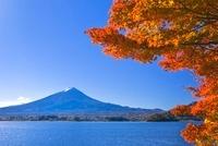 富士山と河口湖の紅葉