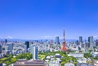 東京タワーと富士山と都会の街並