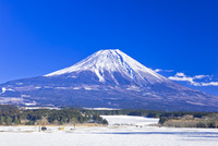 富士山とふもとっぱらの雪景色