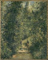 夏の森の道