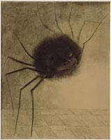 笑う蜘蛛 26004017722| 写真素材・ストックフォト・画像・イラスト素材|アマナイメージズ