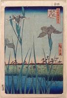 堀切の花菖蒲(名所江戸百景)
