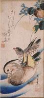 鴛鴦(大短冊ー花鳥) 26004018522| 写真素材・ストックフォト・画像・イラスト素材|アマナイメージズ