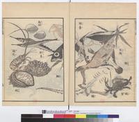 北斎漫画:Poissons, coquillages et crustaces