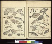 北斎漫画:Poissons, crustaces, coquillages et mollusques