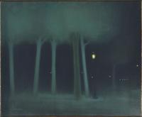 Un parc dans la nuit