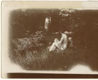 Pierre Bonnard de profil, assis dans l'herbe (prise de vue de Marthe)