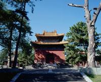 清福陵神功至徳碑亭 26026002688| 写真素材・ストックフォト・画像・イラスト素材|アマナイメージズ