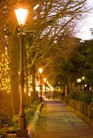 ガス燈と山下公園通り