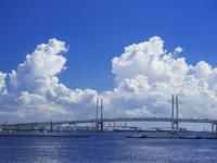 夏雲と横浜ベイブリッジ 26033005378| 写真素材・ストックフォト・画像・イラスト素材|アマナイメージズ