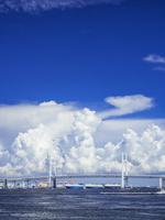 夏雲と横浜ベイブリッジ 26033005382| 写真素材・ストックフォト・画像・イラスト素材|アマナイメージズ