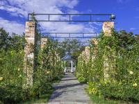 港の見える丘公園 26033005385| 写真素材・ストックフォト・画像・イラスト素材|アマナイメージズ