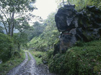 村に向かう山道 26034001279| 写真素材・ストックフォト・画像・イラスト素材|アマナイメージズ
