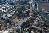 上野公園桜並木 26058020280  写真素材・ストックフォト・画像・イラスト素材 アマナイメージズ