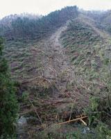 台風の大雨での土砂崩れ現場
