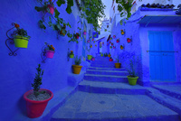 カラフルな花瓶と青い町