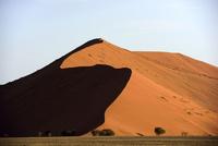 光と影の砂丘 26082000585| 写真素材・ストックフォト・画像・イラスト素材|アマナイメージズ