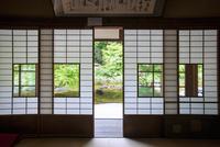 長壽寺新緑