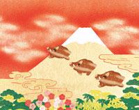 猪と富士山