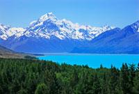 プカキ湖とマウントクック 26105005363| 写真素材・ストックフォト・画像・イラスト素材|アマナイメージズ