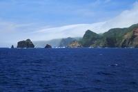 ははじま丸から見た母島