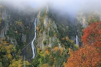 層雲峡の紅葉と銀河・流星の滝と朝霧 26105010426| 写真素材・ストックフォト・画像・イラスト素材|アマナイメージズ