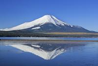 富士山と逆さ富士の山中湖 26105012350| 写真素材・ストックフォト・画像・イラスト素材|アマナイメージズ