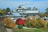 金沢城公園の金沢城