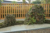 妙成寺のさざれ石