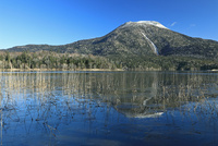 凍り始めた阿寒湖と雄阿寒岳