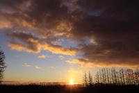 十勝平野の朝焼け