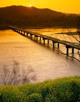 沈下橋と四万十川