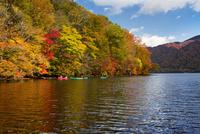 宇樽部キャンプ場付近よりカヌーと紅葉の十和田湖を望む