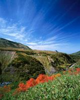 立山連峰と天狗平の秋 26120005937| 写真素材・ストックフォト・画像・イラスト素材|アマナイメージズ