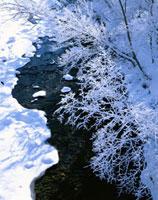 樹氷と川(女名春別川) 日高