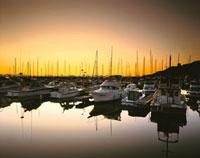 小樽港マリーナの朝 26120006510| 写真素材・ストックフォト・画像・イラスト素材|アマナイメージズ