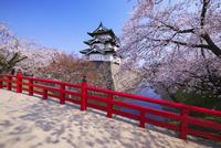弘前城の桜と下乗橋
