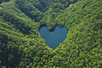 豊似湖 26120034537| 写真素材・ストックフォト・画像・イラスト素材|アマナイメージズ