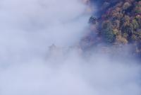 十和田湖の雲海