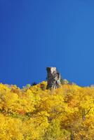 層雲峡の紅葉 26120041916| 写真素材・ストックフォト・画像・イラスト素材|アマナイメージズ