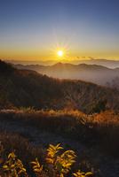 しらびそ高原より望む中央アルプスの日没
