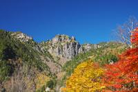 錫杖岳と紅葉 26120041966| 写真素材・ストックフォト・画像・イラスト素材|アマナイメージズ